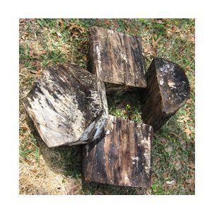 beer wood