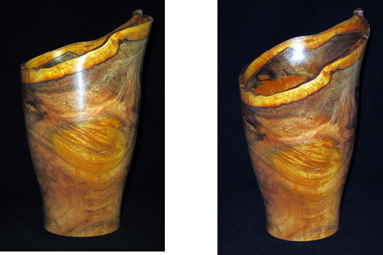 Tropical Almond Natural Edge Vase #313